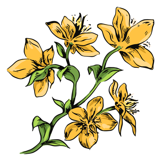 Yellow flowers branch illustration flowers