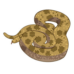 Design plano de cobra anaconda
