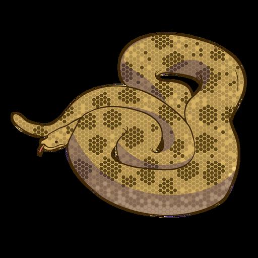 Diseño plano de serpiente anaconda