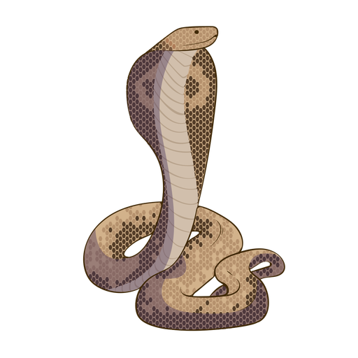 Cobra snake flat design