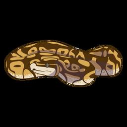 Vista frontal enrollada serpiente plana
