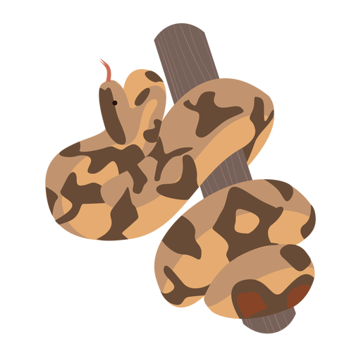 Coiled snake trunk flat
