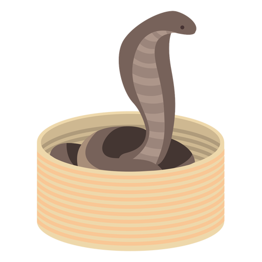 Colied Viper Schlange flach