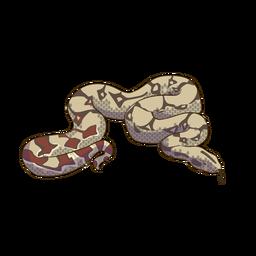 Diseño animal colorido serpiente