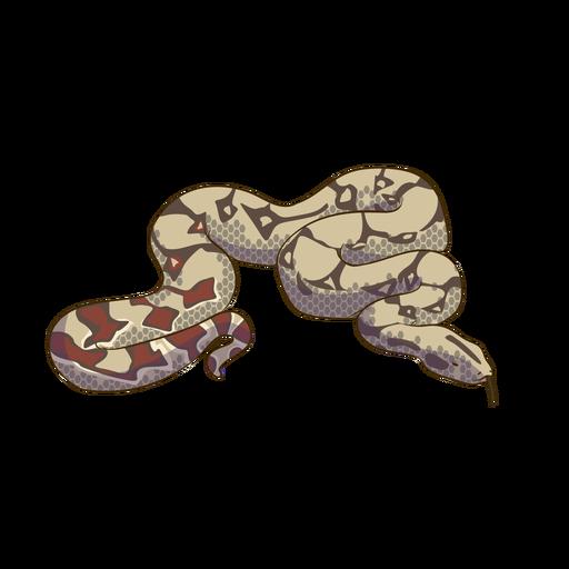 Colorful snake animal design