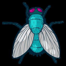Ilustración colorida de la mosca de la vista superior