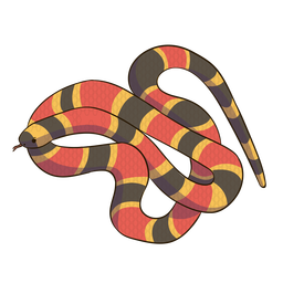 Diseño plano animal serpiente coral