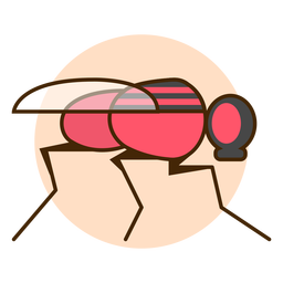 Ícone de inseto voador
