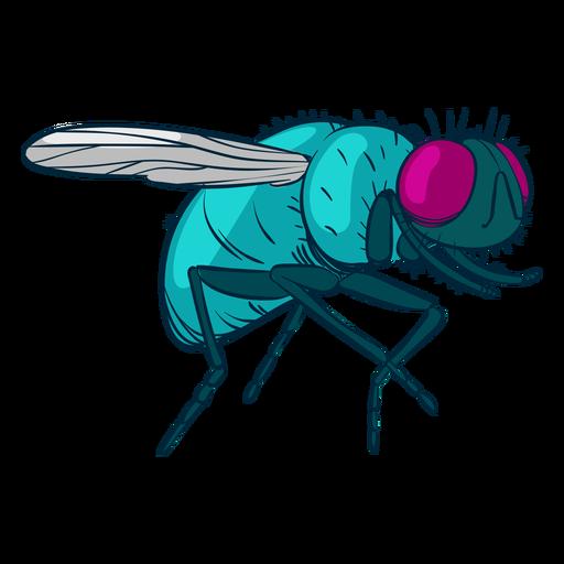 Ilustraci?n de mosca dom?stica