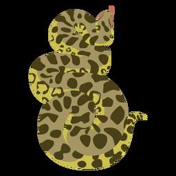 Cobra piton plana