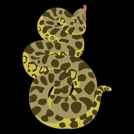 Piton snake animal flat