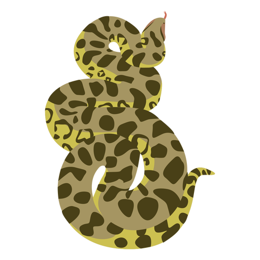 Plano animal serpiente pitón