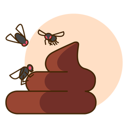 Poop fly icon