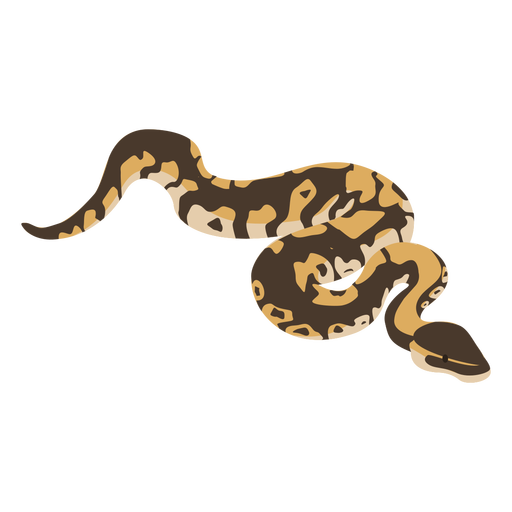 Diseño plano de víbora serpiente