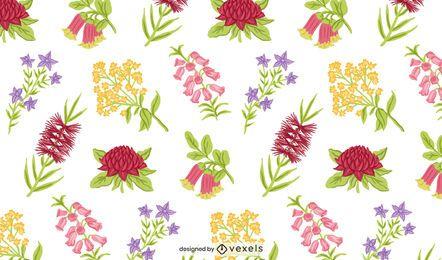 Diseño de patrón de flores nativas de Australia