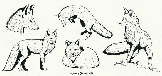 Conjunto de ilustración de zorro dibujado a mano