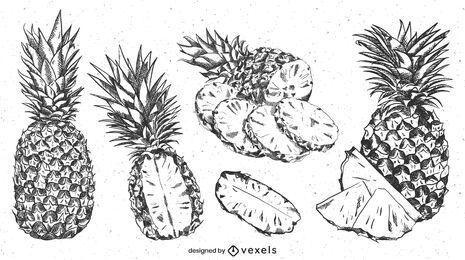 Conjunto realista de abacaxi desenhado à mão