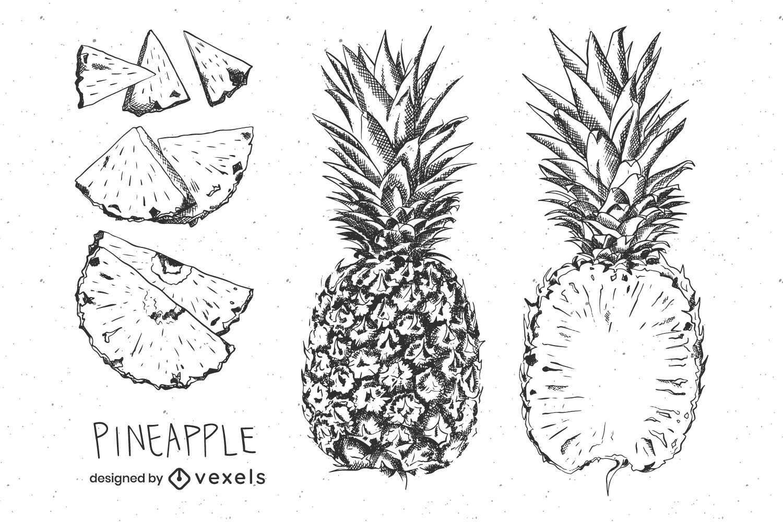 Hand gezeichnete Ananas Set Design