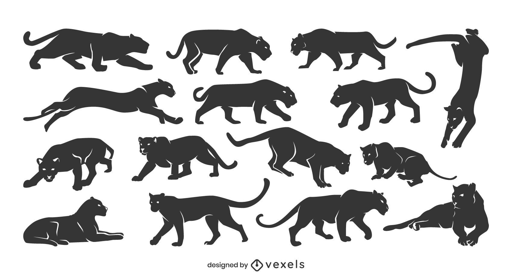 Panther silhouette collection
