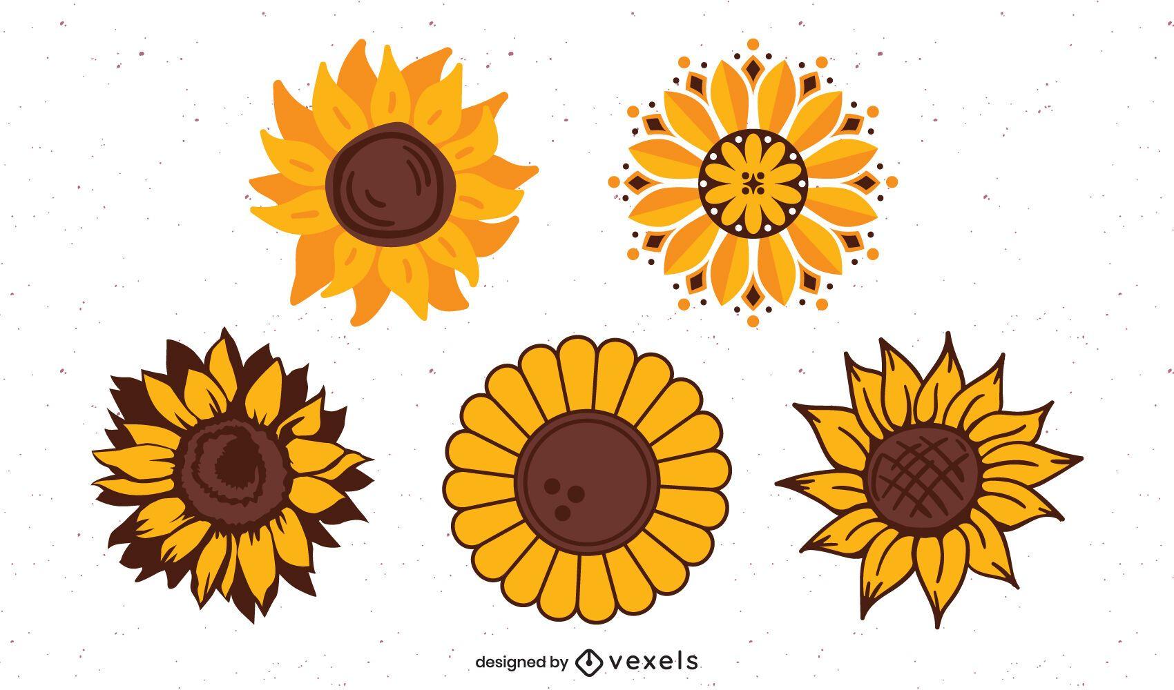 Sunflowers illustation set