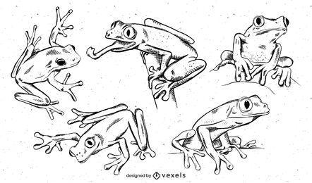 Conjunto de diseño de rana dibujada a mano