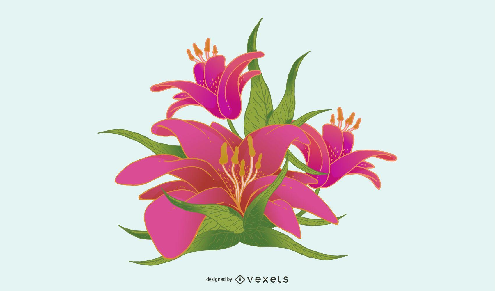 Vector de flor de lirio