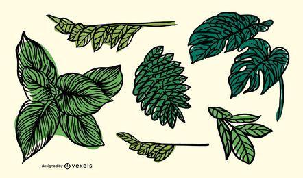 Conjunto de folhas desenhadas à mão