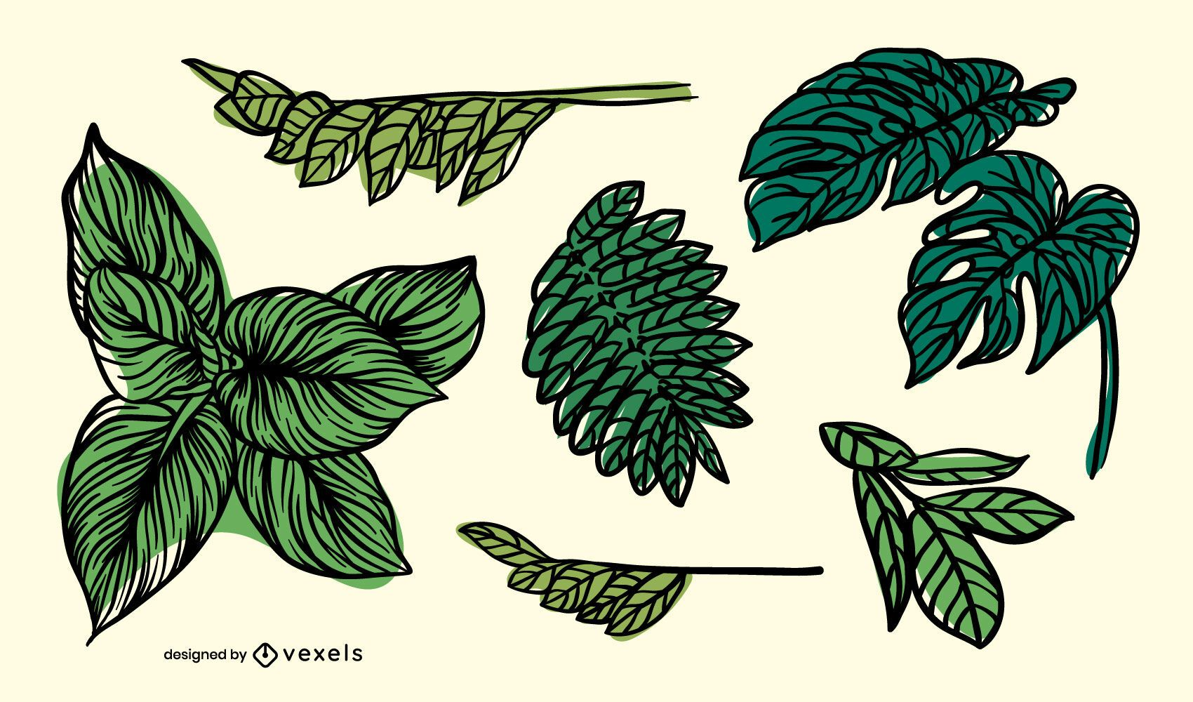 Leaves hand drawn set