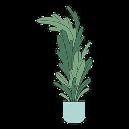 Planta de casa alta plana