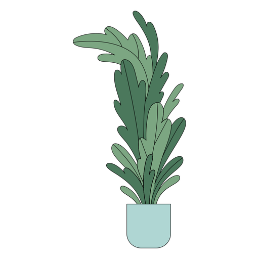Piso alto de planta de interior