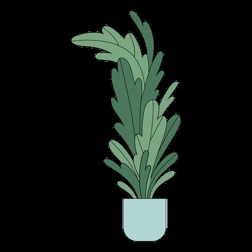 Tall houseplant flat Transparent PNG