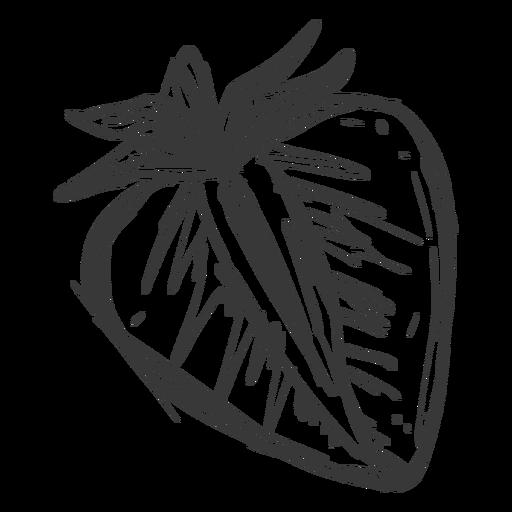 Sliced strawberry hand drawn