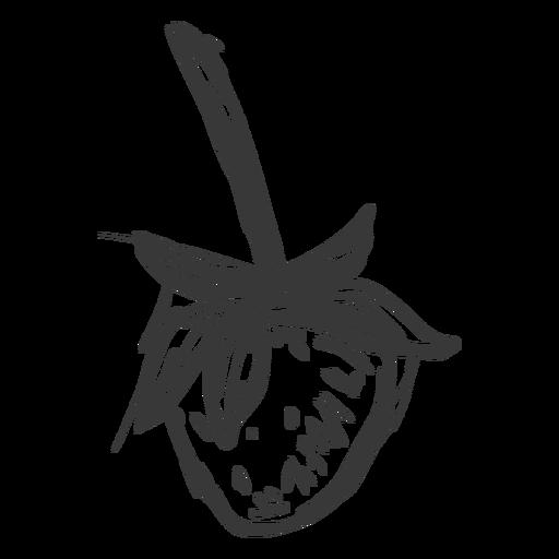 Dibujado a mano rama de fresa Transparent PNG