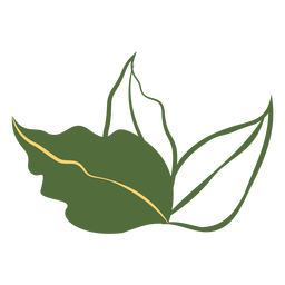 Three leaves filled stroke