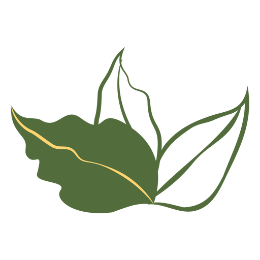 Three leaves filled stroke Transparent PNG
