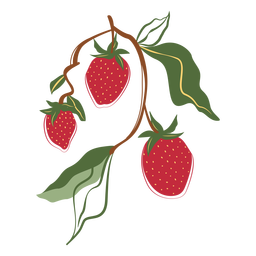 Three strawberries branch illustration