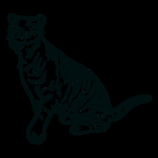 Tigre olhando para cima