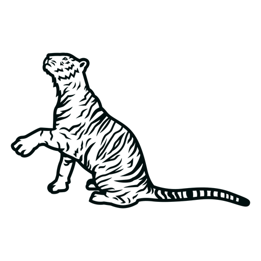Tiger paw stroke