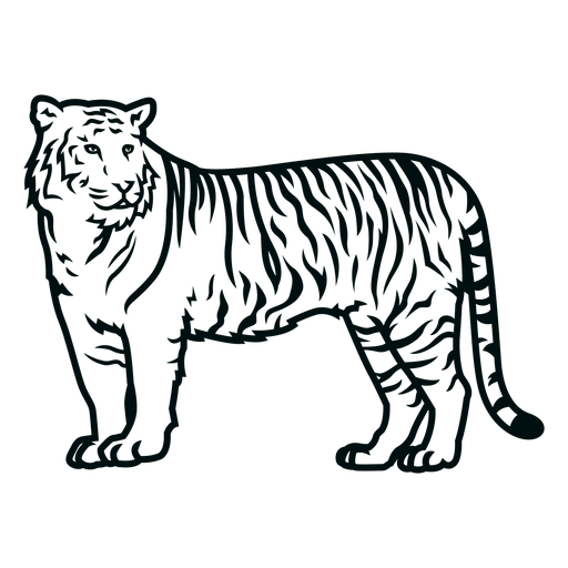 Golpe lateral de tigre