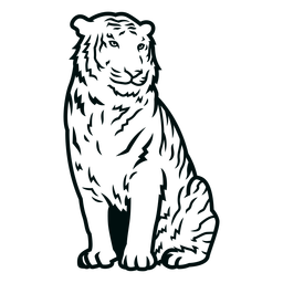 Curso de tigre sentado