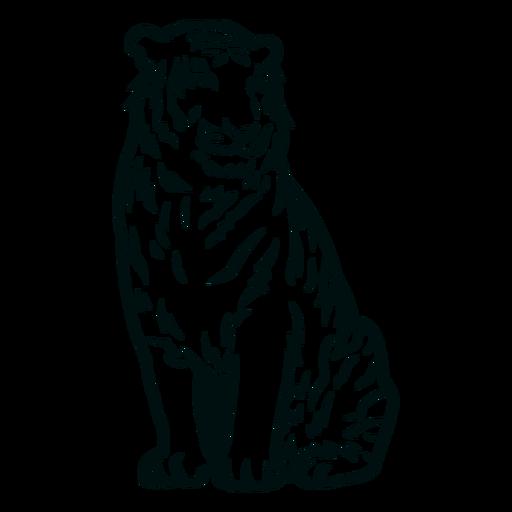 Tiger sitting stroke