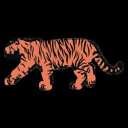 Tigre caminhando com braçada cheia