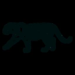 Curso de tigre