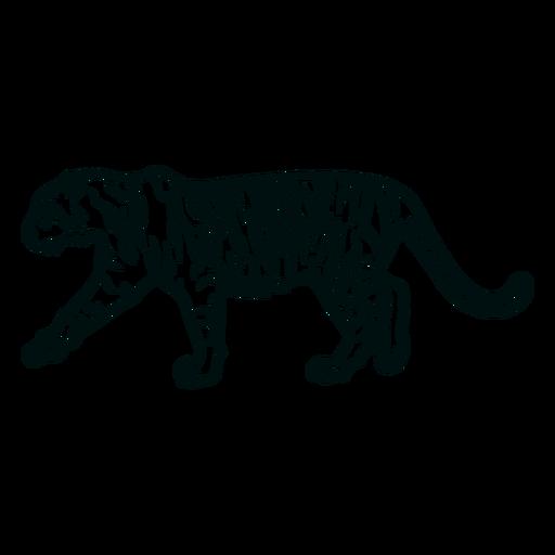 Golpe de tigre caminando