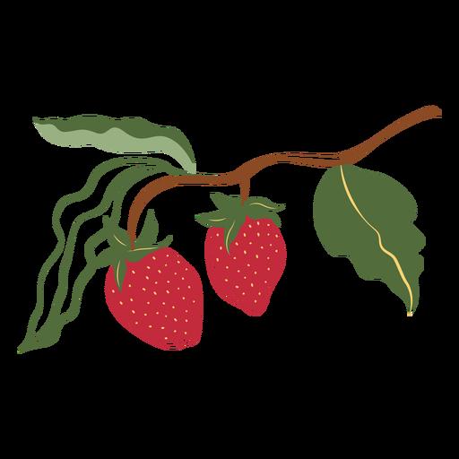Two strawberries branch illustration