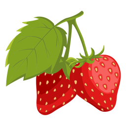 Two strawberries with leaf illustration