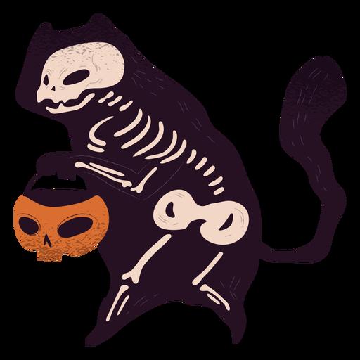Esqueleto de gato com textura