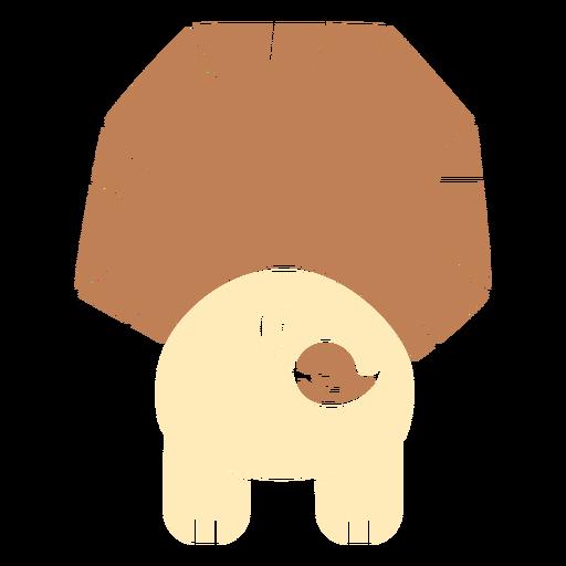 Lindo, león, espalda, cortado