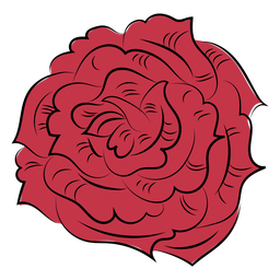 Flower rose nature hand drawn