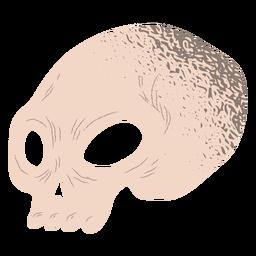 Half skull textured